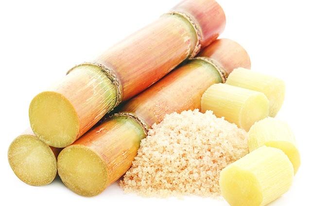 188 milliards FCFA d'investissements prévus dans l'industrie sucrière ivoirienne